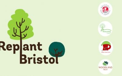 We are contributing to replant Bristol!